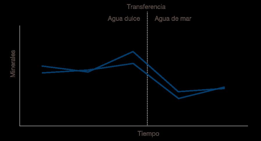 1705 Prime Express Figures Spanish