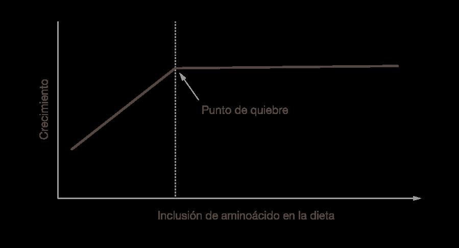 1705 Prime Express Figures Spanish 10