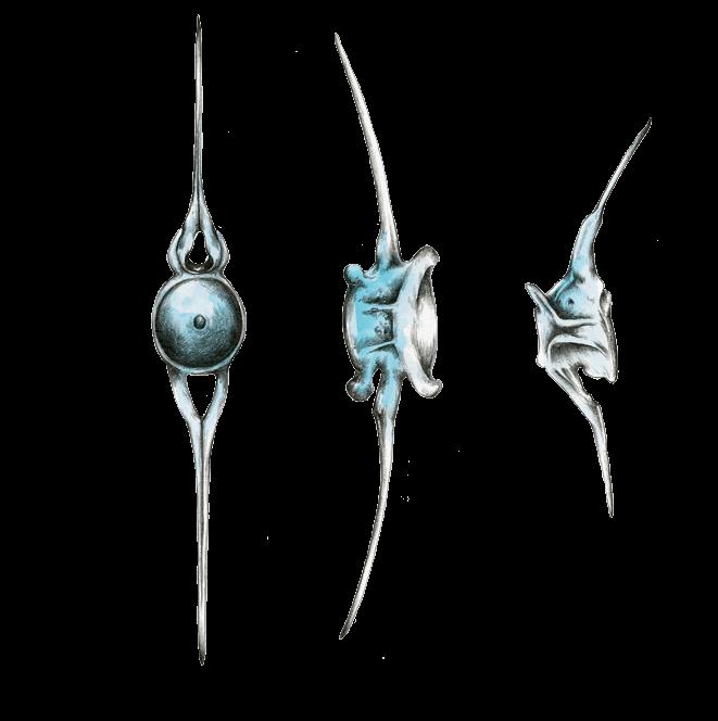Layer 7 - Esqueleto